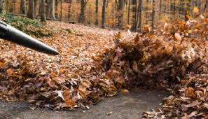 leaf-blowing