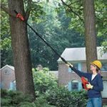 Lithium Pole Tree Pruner