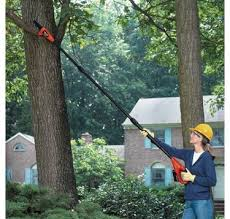 Lithium Pole Tree Pruner