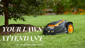 Lithium Mowers Home Page