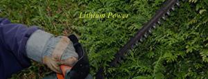 Lithium Powered Hedging