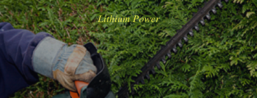 Lithium Powered Hedging